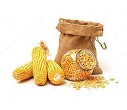 Кукуруза замороженная зерно(10кг) 10кг